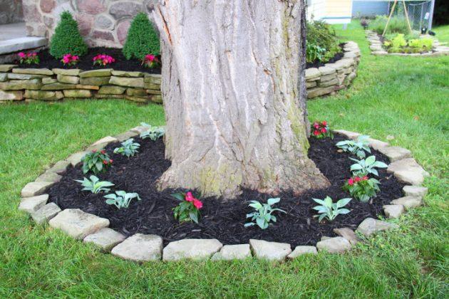 Abbellire Gli Alberi In Giardino 17