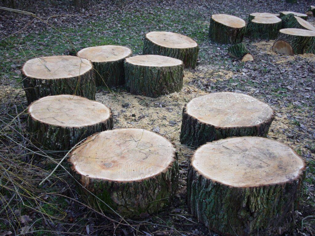 Cosa sono i ceppi di legno?