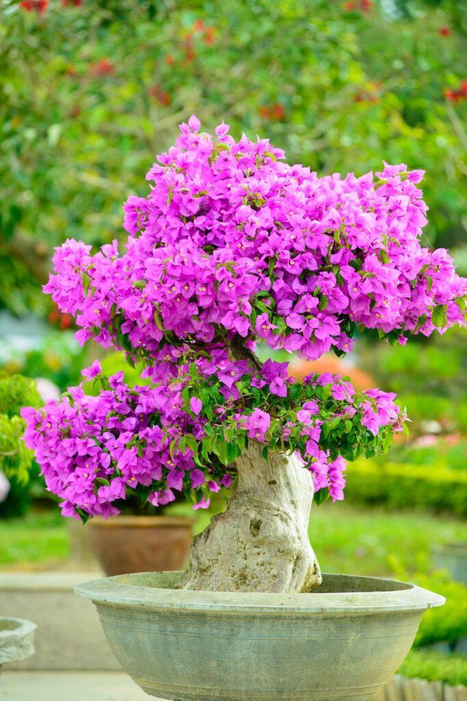 idee fai da te per abbellire il giardino