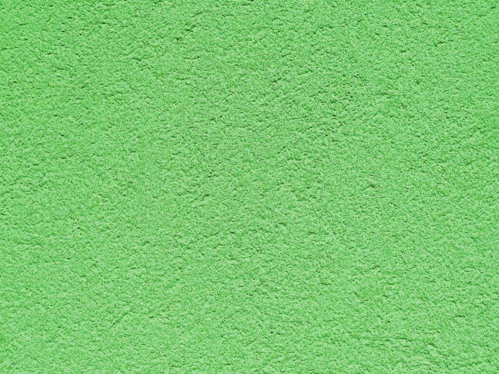 Vari tipi di verde da utilizzare in casa
