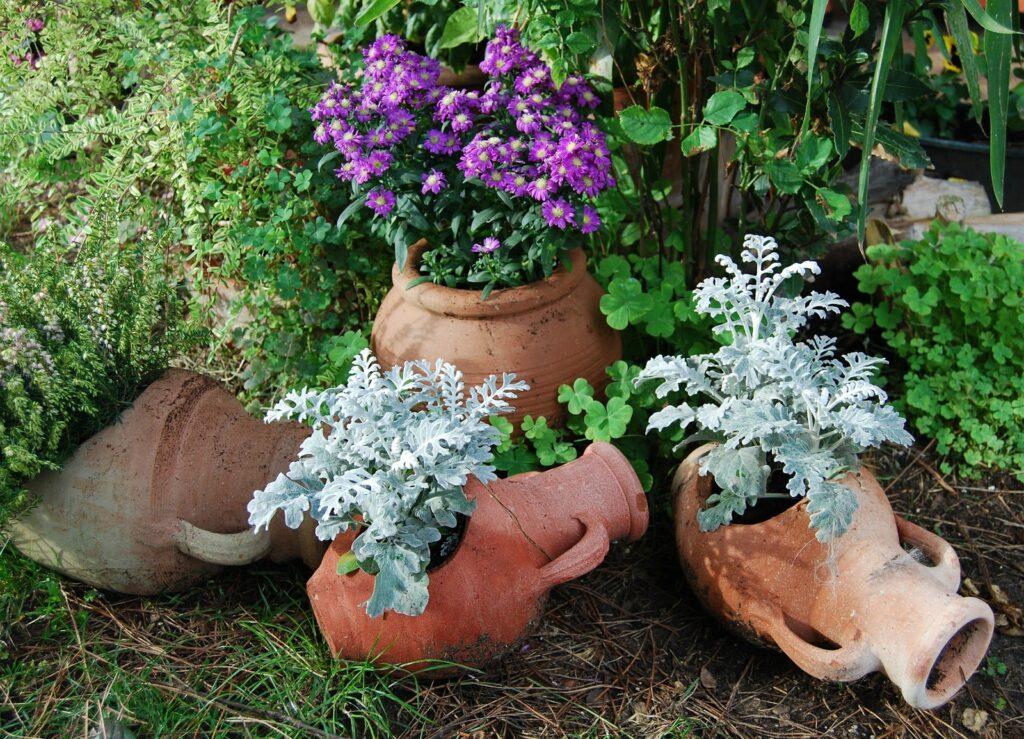 Decorare il giardino con i vasi in terracotta