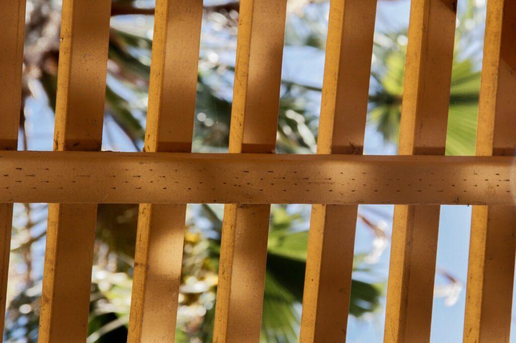 Progettare il pergolato in legno per il proprio giardino