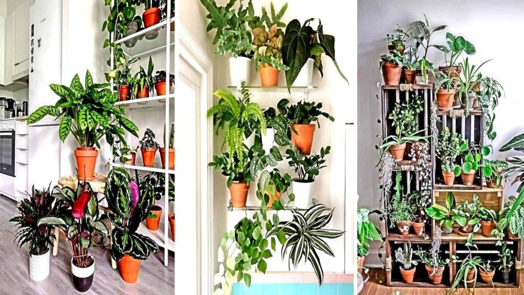 Come allestire un giardino interno