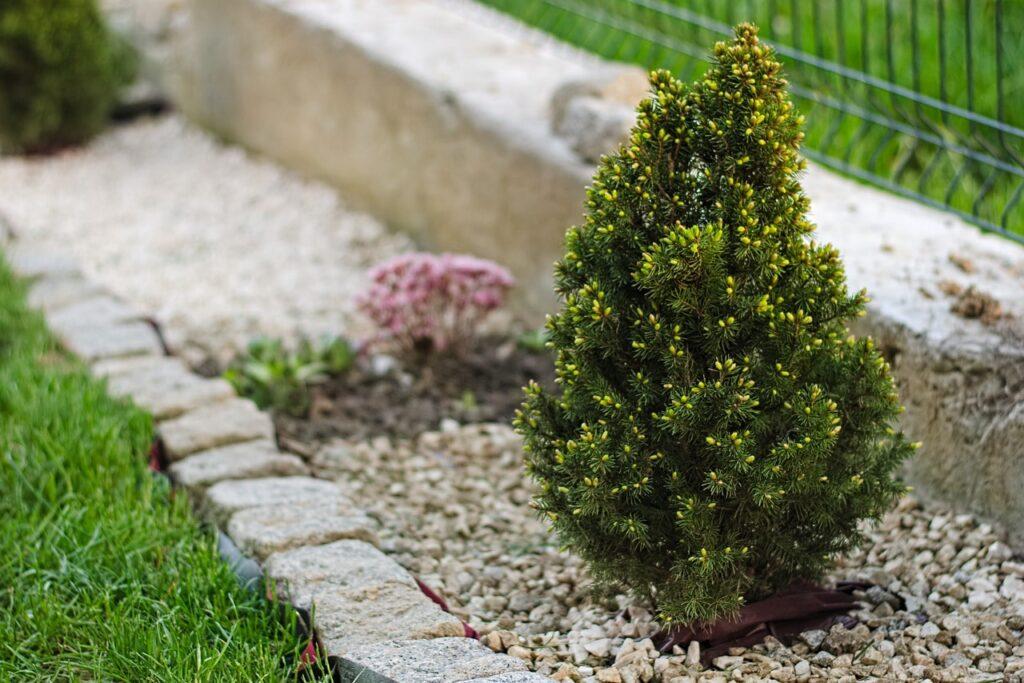 Decorare il giardino con le pietre